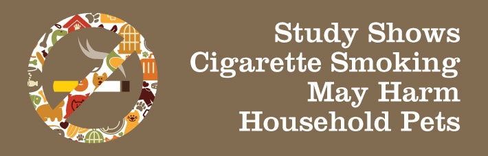 Did you know cigarette smoke could hurt your household pets?