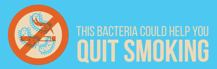 Bacteria could help quit smoking