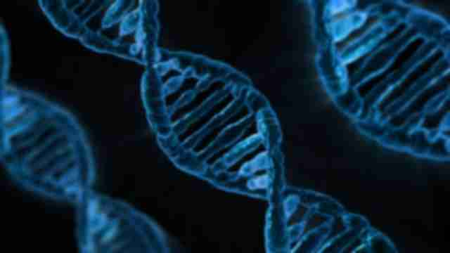 Smoking damages DNA
